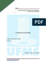 Perspectiva de Jean Piaget