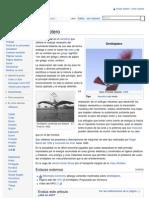 Ornitóptero - Wikipedia, la enciclopedia libre