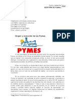 gestion pymes