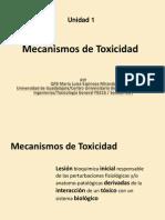 Mecanismos_de_Toxicidad[1]