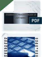 Tecnico en Programacion 2011_pro