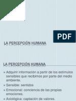 La percepción humana