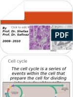 Cell Cycle and Its Regulation