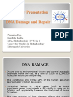MY 1st Sem. Presttn DNA Damage & Repair Ppt MW 2003
