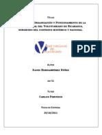 Estatuto red de voluntariado Nicaragua