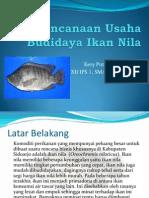 an Usaha Budidaya Ikan Nila