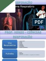 sistema respiratotio