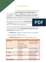 sindromemeningeodef-110930040011-phpapp02