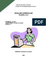 Denisa Visan - Gestiune Economica