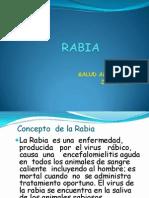 RABIA 20112