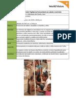 VES  y VMT - Salud y Nutrición-Vigilancia Comunitaria en salud y nutrición