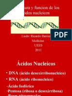 Estructura y Funcion de Los Acidos Nucleicos Medicina 2011