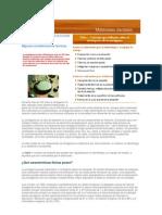 amalgama-091012194348-phpapp02[1]