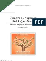 Cumbre de Negocios 2011