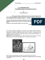 principios_basicos_osteopatia