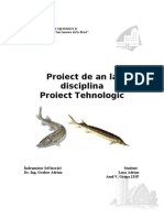 Proiect tehnologic Pastruga