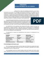 Parasitosis Del Cerdo 02