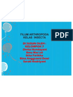 PPT Insecta