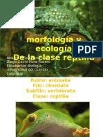 Morfologia y Ecologia de Repties