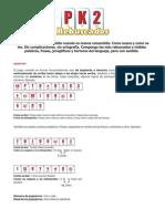 pk2 instrucciones