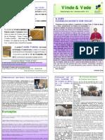 """Publicação Diocesana - """"Vinde e Vede"""" - N.º 9"""