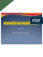 Informe Final Gestion1
