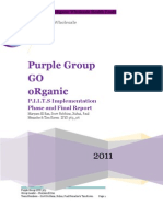 Purple Group Implement Ion Phase Final Report Sec 06 Final Draft