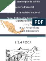 Analisis de La Realida