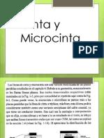 Cinta y Microcinta PRE 7