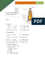 P2 PROBLEMA_sider