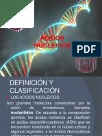 Acidos Nucleicos (Demo)