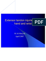 Extensor Tendon Injuries in the Hand and Wrist 16042007
