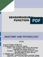 Sensorineural Function