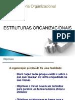 estrutura organizacional modificado