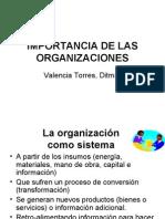 Importancias De Las Organizaciones