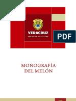 MONOGRAFA DE MELN