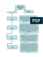 Estructura y Función de Las Plantas