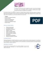 Cincuenta consejos para ahorrar energía y dinero - CNFL - 23jun2008
