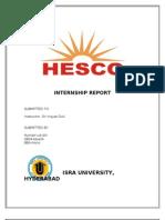HESCO Intern-ship Report