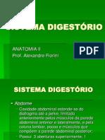 sistema-digestrio-ii-1226197959692635-9