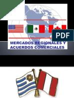 MERCADOS_REGIONALES_Y_ACUERDOS_COMERCIALES[1][1]