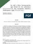 Paleopatología oral y dieta