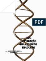 Genetic a Dna 2