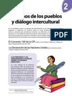 Boletín Nº 2 - Derechos de los Pueblos Indígenas y Diálogo Intercultural