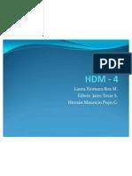 PRESENTACION HDM - 4