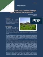 Buena Practica Agua Productiva-Ayacucho_CARE