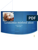 Leukimia Mieloid Akut