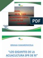 Tamaulipas2008_28_001