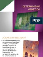 Determinismo Genético