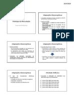 A6-Fisiologia da Musculação Metabolismo